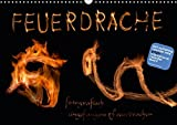 Feuerdrache (Wandkalender 2017 DIN A3 quer): Fotografisch eingefangene Feuerdrachen (Monatskalender, 14 Seiten ) (CALVENDO Kunst)