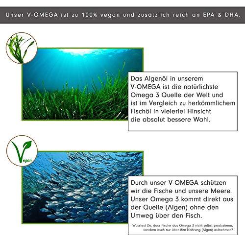PROFUEL® V-OMEGA (Motoroel) │Vegane OMEGA 3 Fettsäuren │Microalgen EPA & DHA hochdosiert │Die optimale und pflanzliche Alternative zu Fischölkapseln │60 Soft Caps - 4