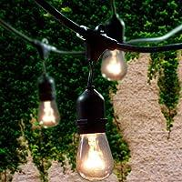 Lemontec 48 Ft Commercial Grade Outdoor String Lights with 15 Hanging Sockets