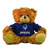 Nfl Friends Teddy Bears