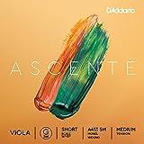 D'Addario Ascenté - Corda Sol per viola, scala corta, tensione media...