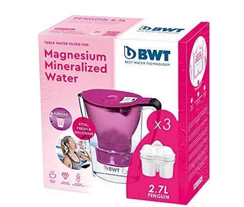 BWT Penguin Morada Pack 3 filtros - Jarra filtradora de agua con marcador electrónico + Pack 3 filtros con magnesio además de reducir cal y el cloro - 2.7 L