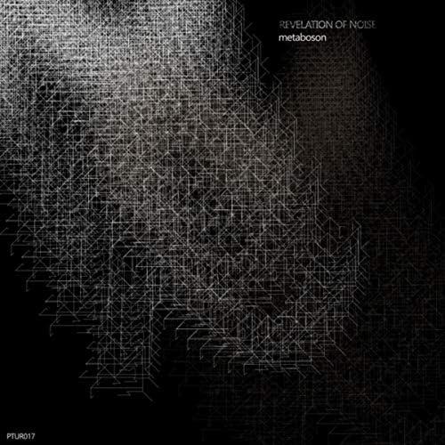 Revelation of Noise