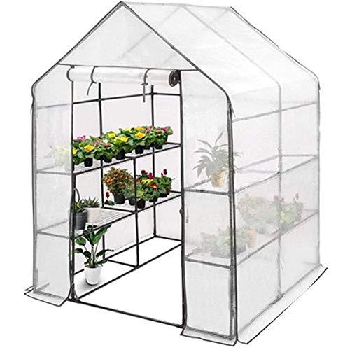 QINDING Invernadero de jardín para exteriores – Puerta de malla portátil de PVC de 3 niveles, planta pop-up de jardín, casa verde ayuda a extender la casa de cultivo de plantas, 143 x 143 x 195 cm