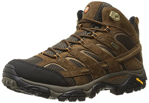Merrell Men's Moab 2 Mid Waterproof Hiking Boot, Earth, 8 M US