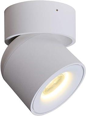 Aisilan Flush Mount Spotlight Rotating Lamp LED Ceiling Light 3 Dimension Adjustable Minimalist White Black Nordic Style Natu