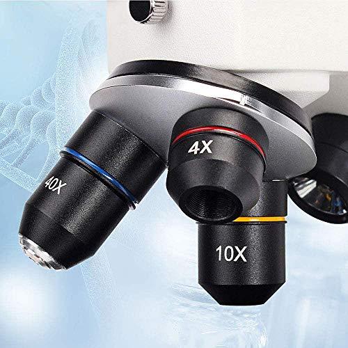 Solomark Mikroskop 20x-1280x mit Smartphone-Halterung Erfahrungen & Preisvergleich