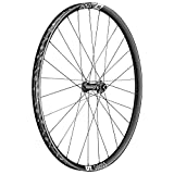 DT Swiss EX 1700 Spline Rueda Delantera 29' Disc CL 15x110mm TA 21mm 2021 ruedas para bicicleta de montaña 26'