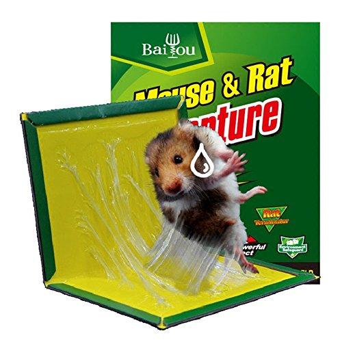 Lutte contre les rongeurs Piège à Colle pour Rats Souris Pieges à Glue Très Efficace Tueur d'insectes Respecte l'environnement Inoffensif plaques Plastique (1PCS Lutte contre les rongeurs)