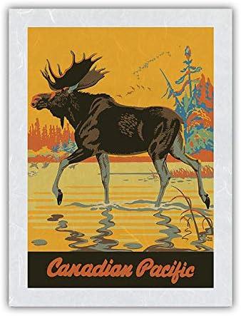 Visit Canada - 限定価格セール Bull Moose Railway Vintage Pacific Canadian R 配送員設置送料無料