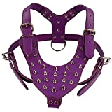 Didog Purple Leather Dog Training Walking Hiking Running Sports Spiked Studded Vest Harness for Large X-Large Dogs Chest Girth 23.5-34' Adjustable Perfect for GSD Husky Pitbull BullDog Labrador