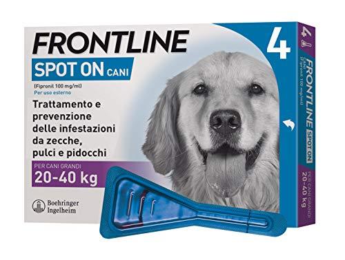 Frontline | Spot On Cani e Cuccioli | Protezione da zecche, pulci e pidocchi | 4 Pipette | Cane L (20 - 40 kg)