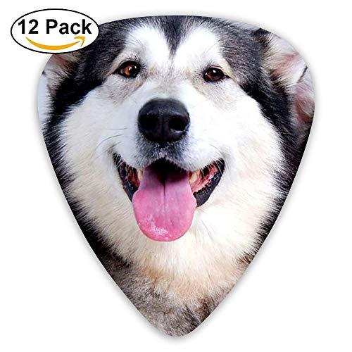 Classic Gitaar Pick (12 Pack) Zwembad hond Speler Pack Voor Elektrische Gitaar, Akoestische Gitaar, Mandoline, Gitaar Bas Eén maat color7