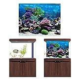 Papel de fondo de pecera, imagen HD, póster de decoración de pecera engrosada, para acuario, tienda de peces, pecera, hogar(61 * 41cm)