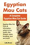 Egyptian Mau Cats: Egyptian Mau Cat Facts & Information, where to buy, health, diet, lifespan, types, breeding, care and more! A Complete Egyptian Mau Cat Guide