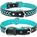 TagMe Leather Dog Collar for Small Dogs, Braided Soft Padded Dog Collars with Double D-Rings,Teal S