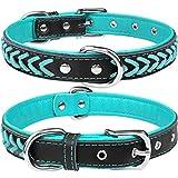 TagME Collar de Cuero para Perro, Collares de Cuero Ajustables y Duraderos con Anillo en D para Perros Medianos, Azul Verde