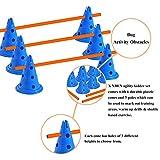 X XBEN Hund Agility Set, Agility-Ausrüstungs-Set für Hunde für Haustiere, Hunde, Outdoor-Spiele, Training, Training, ø 23 × 30 cm/Kegelhürden, ø 60 × cm/Stange, ø 60 cm/Ring, orange/Blaue - 3
