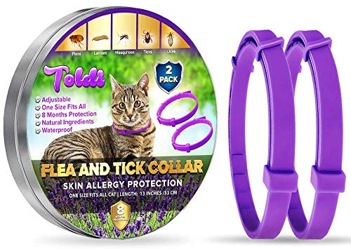 toldi Tratamiento-antipulgas-para-Gatos, Ajustable pequeño-Mediano-Grande, 8-Meses-Repelente-de-garrapatas&piojos para Gatitos, Protección Impermeable para el Tratamiento de Las pulgas para Mascotas