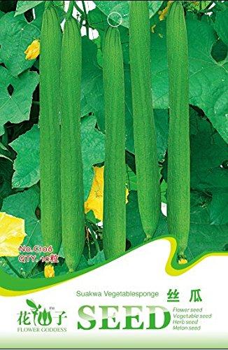 (Mix minimum 5) 1 paquet d'origine 10 pcs gourde serviette, longue Luffa Graines de légumes Livraison gratuite B046