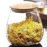 TAMUME 400ml Vaso da Cucina in Vetro con Coperchio in Legno, Scatola del tè o Contenitore per caffè in Grani, Dosatori ed Erogatori per Condimenti (400ML)