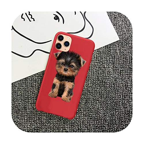 Yorkshire Terrier - Carcasa para iPhone 11 12 Mini Pro XS MAX 8 7 6 6S Plus X 5S SE 2020 XR-a11-iphone7or8