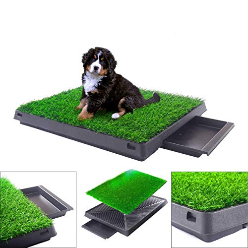 grass like pee pads for dogs