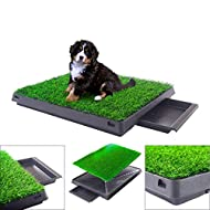 "BRINGERPET Indoor Puppy Dog PET Potty Training Pee PAD MAT Tray Grass House Toilet W/Tray 20"" x 25"""