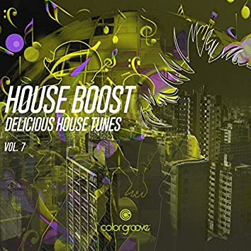 House Boost, Vol. 7 (Delicious House Tunes)