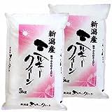 新潟県産 ミルキークイーン 白米 10kg (5kg×2 袋) 令和元年産