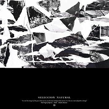 Seleccion Natural - Digital Bonus EP