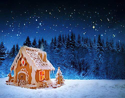 Aluffay Christmas Gingerbread Diamond Painting Kits, Christmas Gingerbread House and Starry Sky, 5D DIY Full Drill Diamond Art Set for Home Wall Decor Adults and Kids 16 x 20 inch