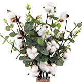 CEWOR 6pcs 21' Cotton Stems 4 Cotton Heads with Eucalyptus Leaves for Home Farmhouse Style Floral Decoration