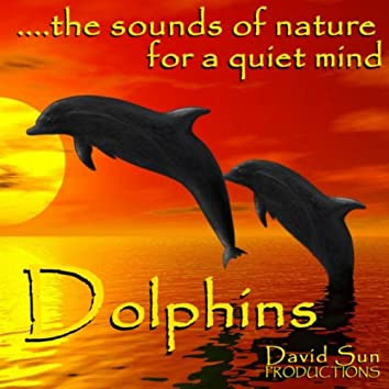 Dolphins (The Sounds of Nature for a Quiet Mind)