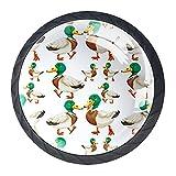 KAMEARI Bonitos patos de cabeza verde sobre fondo blanco, 4 piezas tiradores de cajón con mango de cristal en forma de círculo de armario con tornillos para el hogar, la cocina y la oficina