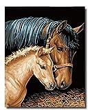 golden maple DIY Malen Nach Zahlen-Vorgedruckt Leinwand-Ölgemälde Geschenk für Erwachsene Kinder Kits Home Haus Dekor - Pferdepaar 40*50 cm