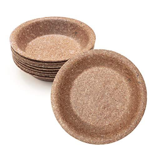 Wisefood - Schale - Einwegschale aus Weizenkleie als Alternative zu Pappschale Plastik-Schüssel Suppenterrine Partyteller - Geeignet für Grillfest Party Ausflug - nachhaltig - Ø 20cm 10 Stück