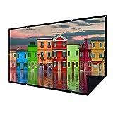 Écran de projection à double couche 16:9 de 100 cm avec 15 clous - Sans transmission de lumière - Pour la maison, le cinéma extérieur, le bureau - Sans pli