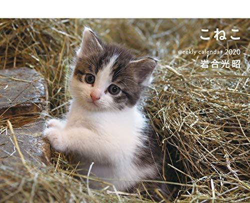 こねこ weekly calendar 2020 ([カレンダー])