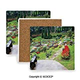 Ceramic coaster With wood Bottom Protection, For Mugs, Wine Glasses, Protects Furniture Square,Country Decor,Bromeliad at Mae Fah Luang Garden Lawn,3.9