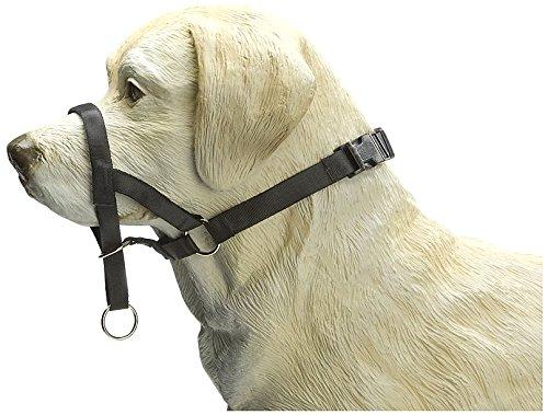 Beeztees halsband concealer control voor honden, zwart, L 38 cm