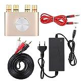 Mini Amplificador Estéreo de Alta Fidelidad Mini Amplificador Digital de Potencia Bluetooth 100 W Reproductor de Audio Estéreo de Alta Fidelidad Amplificador Enchufe de la UE