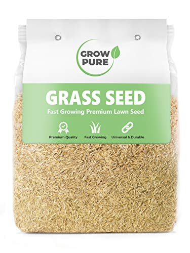 Grass Seed (1kg Covers 60 sqm) Fast Growing Premium Quality Lawn Seeds...