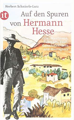 Auf den Spuren von Hermann Hesse: Calw, Maulbronn, Tübingen, Basel, Gaienhofen, Bern und Montagnola (insel taschenbuch)
