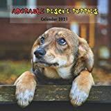 Adorable Rescue Puppies Calendar 2021: Wall And Desk Calendar 2021, Size 8.5' x 17' When Open | UK and US Official Holidays | Must Have For Puppies Lovers.