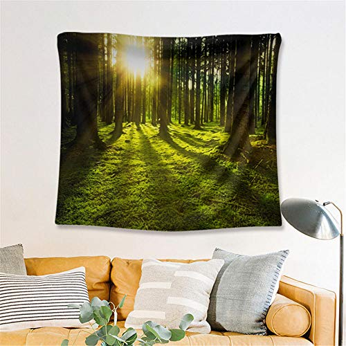 Forest Sunset Tapestry Landscape Wall Hanging Wall Decoration Home Decoration Yoga Blanket Beach Towel Background Cloth,XL/180x230cm(70'x91'),Ssfj07
