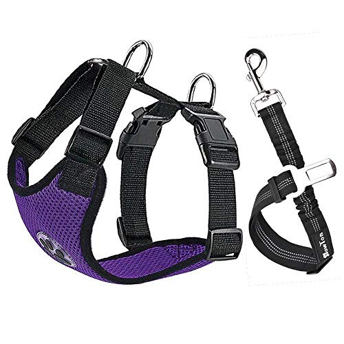 51vaMlfUXaL Car Vest Harness with Safety Seat Belt for Dogs