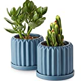 ZONESUM Succulent Planters