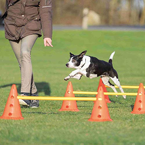 Trixie 32091 Dog Activity Hindernisse, 3 St., ø 23 × 30 cm/78 cm, orange/gelb