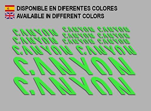 Ecoshirt PW-T2AO-RPEZ Aufkleber Canyon F157 Vinyl Adesivi Decal Aufkleber ・ŸŸŸber MTB Stickers Bike, grün